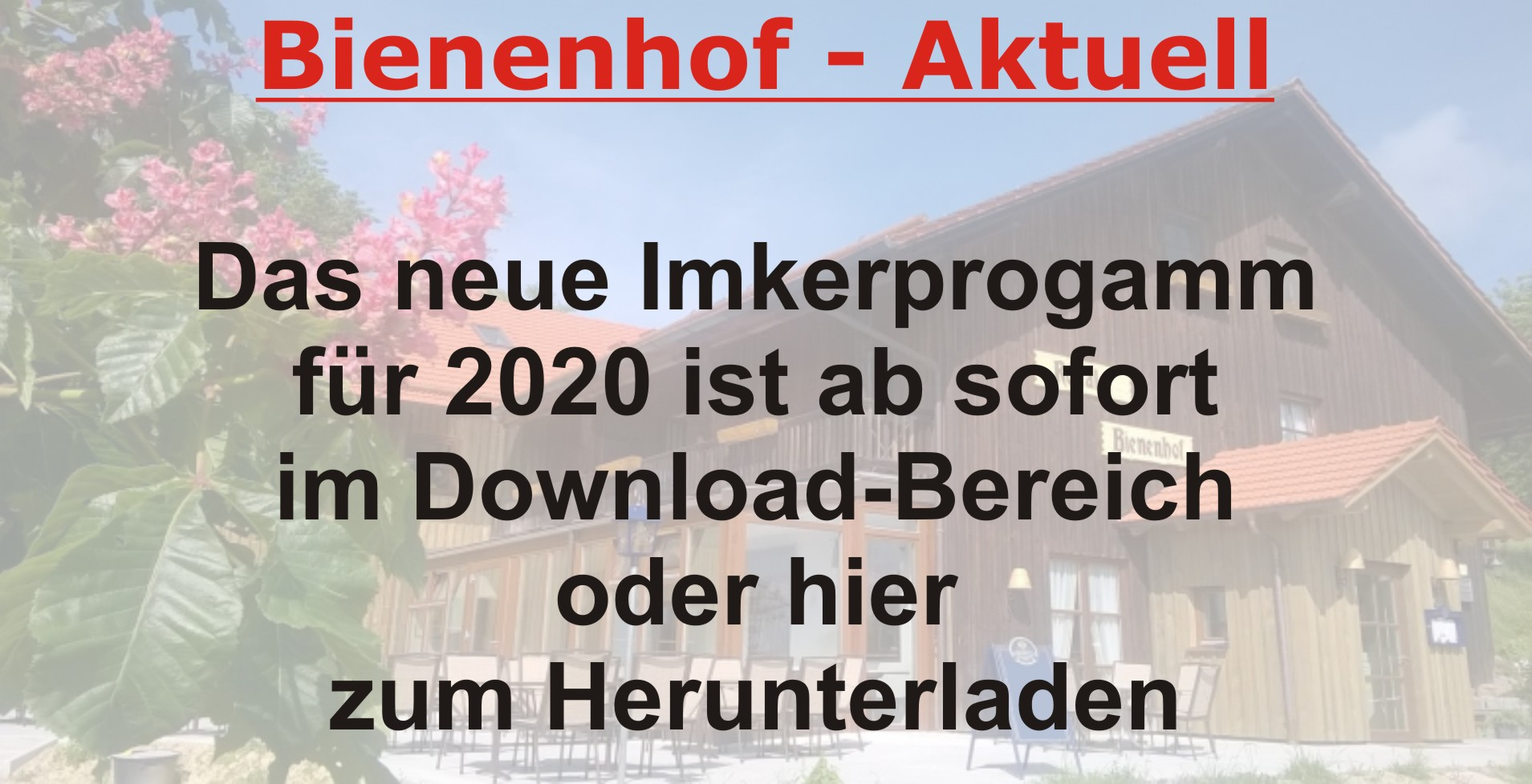 Imkerprogramm 2020
